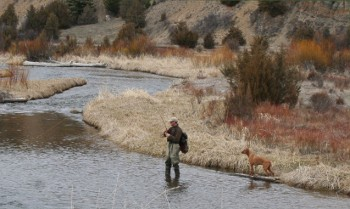 Flyfishing on a high-valley stream near Philipsburg, MT.