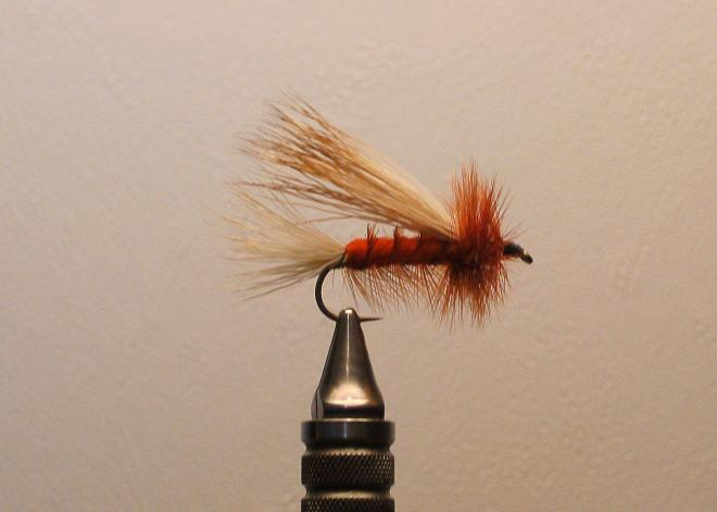 Marcellas Trout Fly