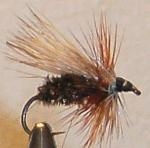 Here is one of many trout flies tied by Chuck the Fly Guy in Philipsburg, MT. Fly Fishing in Philipsburg's streams and lakes is a great vacation activity.