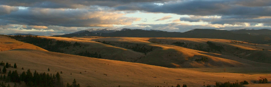 Flint Creek Valley